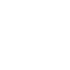 Icons - Hockey – Blanco